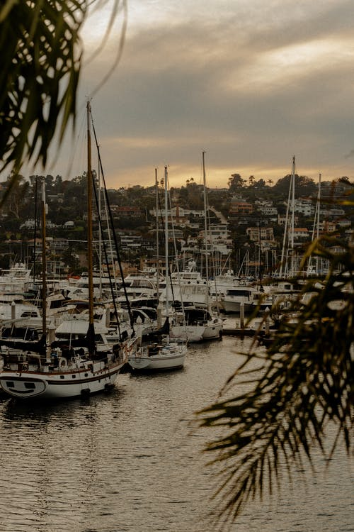 Photo of Boats on Harbor