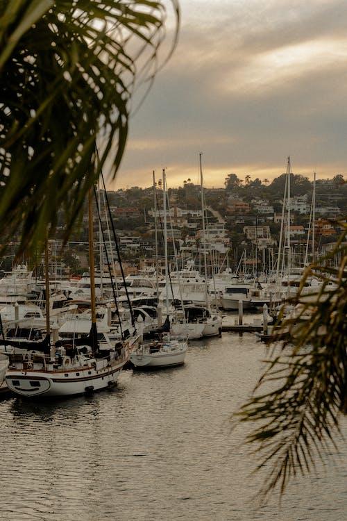 deniz araçları, gemiler, liman