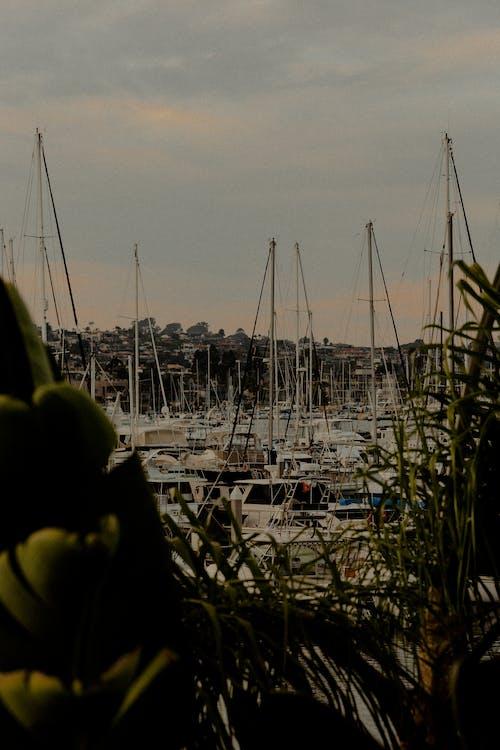 deniz araçları, direkler, gemiler, rıhtım içeren Ücretsiz stok fotoğraf