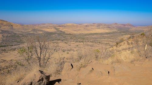 çöl, doğa, doğa fotoğrafçılığı, kış içeren Ücretsiz stok fotoğraf