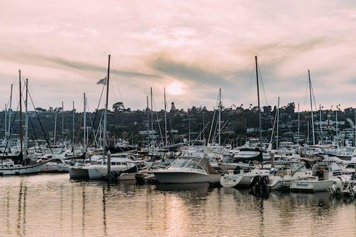 Бесплатное стоковое фото с вода, гавань, дневной свет, залив