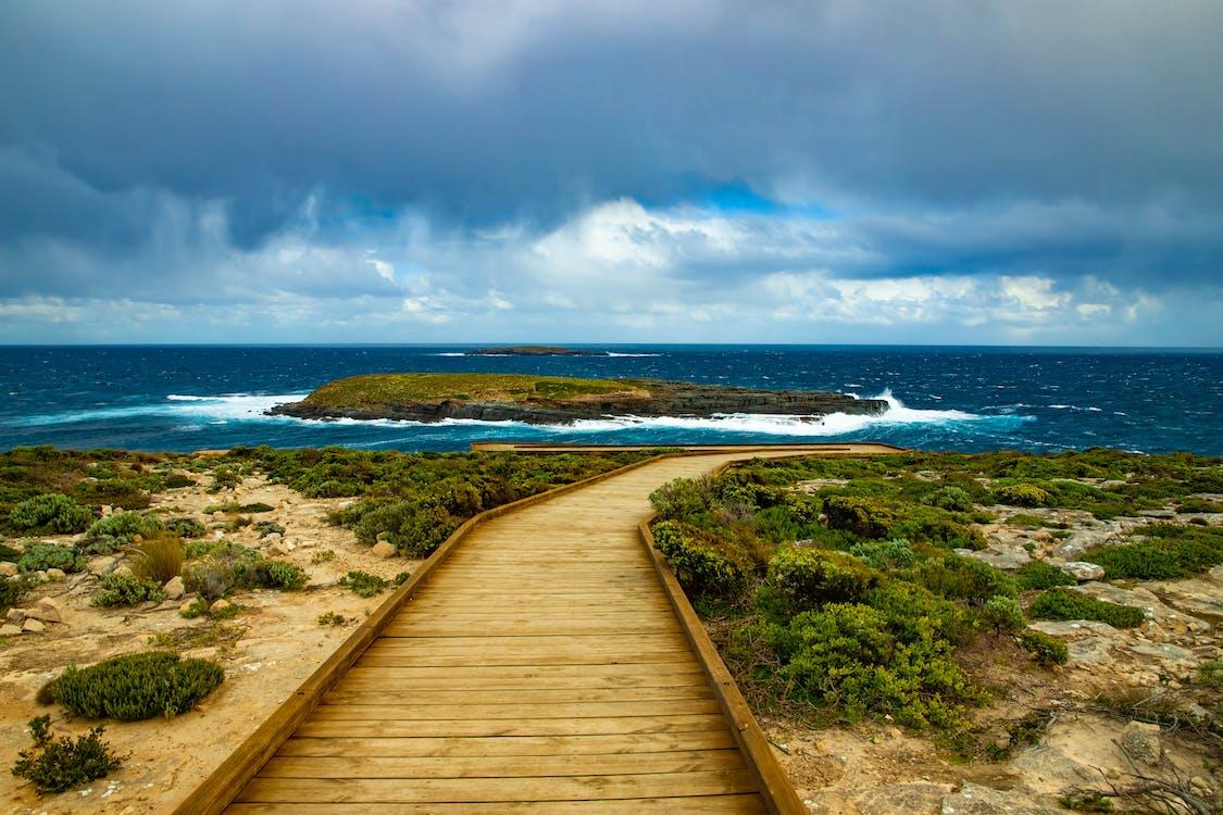 Brown Wooden Pathway Under Cloudy Sky