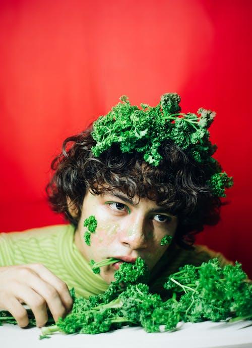 Základová fotografie zdarma na téma celer, červené pozadí, focení, kousání