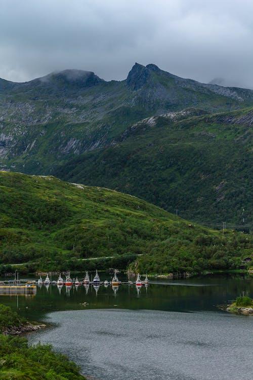 Foto profissional grátis de cadeia de montanhas, calmo, cenário, cênico
