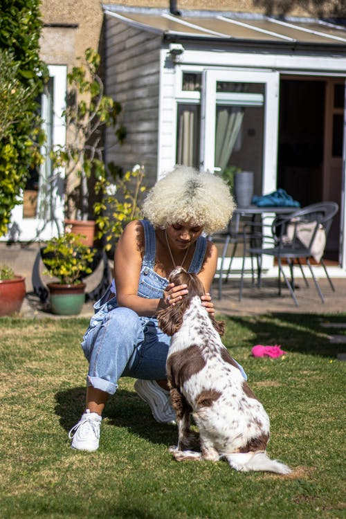 Free stock photo of 20-25 years old woman, african woman, afro hair, dog