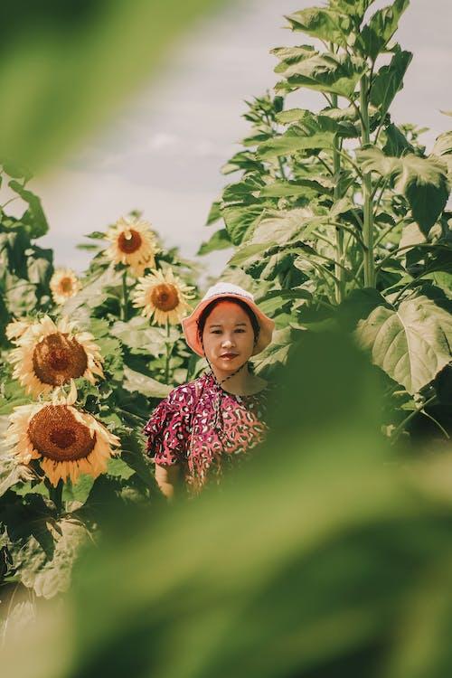 Woman Near Sunflowers