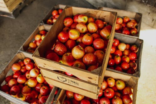 Boxes with fresh colorful apples in storehouse