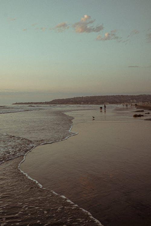 Kostnadsfri bild av hav, havsområde, havsstrand, natur