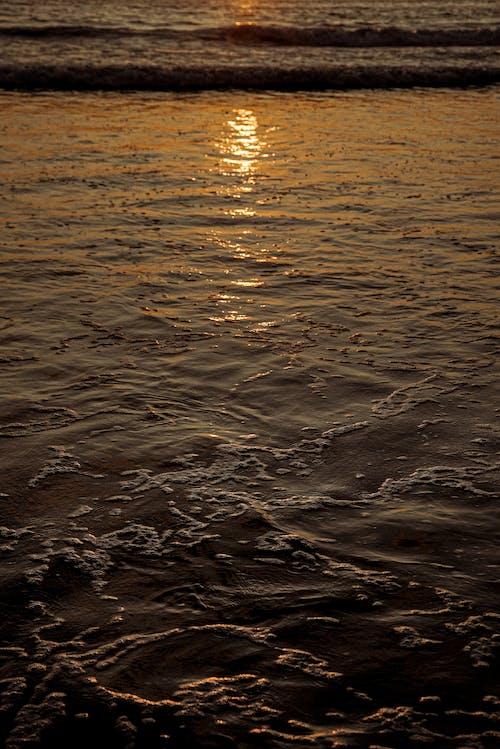 Gratis lagerfoto af hav, kyst, strand, vand