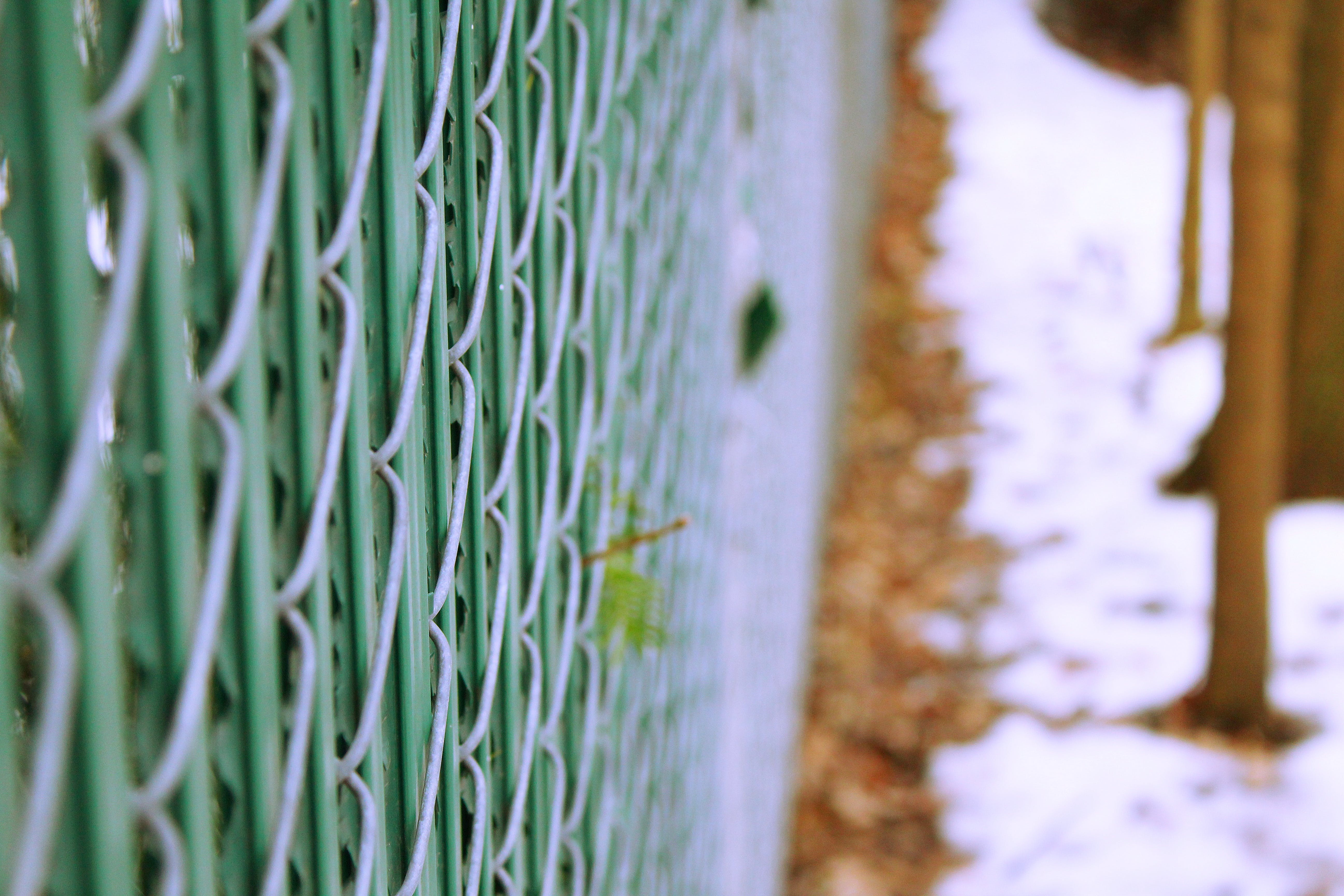Free stock photo of fence, green, outside, photography
