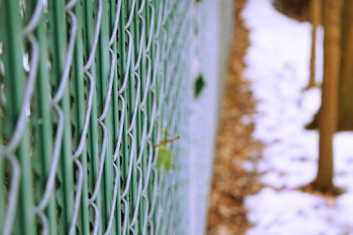 Gratis stockfoto met fotografie, groen, hek