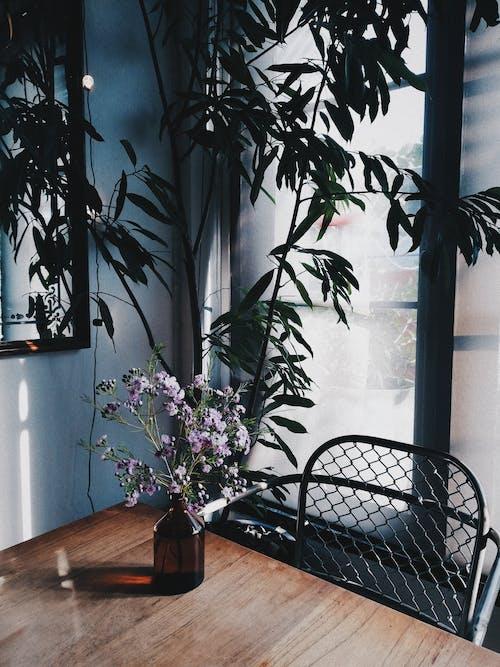 Foto stok gratis bagus, bangku, bejana, bunga-bunga