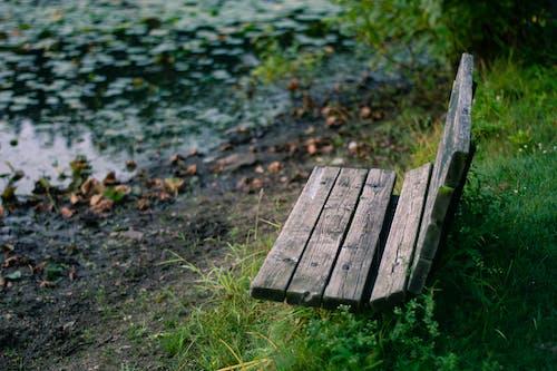 Imagine de stoc gratuită din bancă, în aer liber, loc, natură