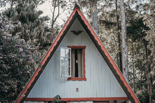 Imagine de stoc gratuită din acoperiș, câmp înverzit, case din lemn, flori