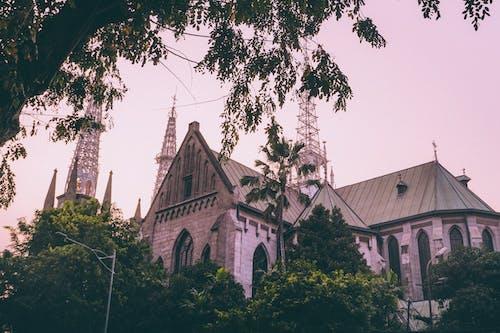 Foto profissional grátis de capela, céu da cidade, céu noturno, céu rosa