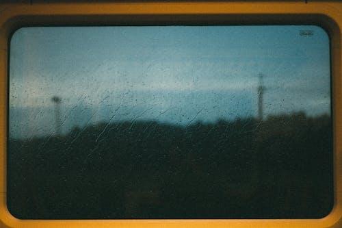 Foto profissional grátis de água, chovendo, chuva, close