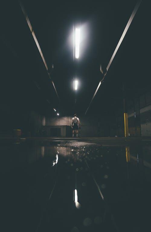 人, 光反射, 反射, 景觀 的 免费素材照片
