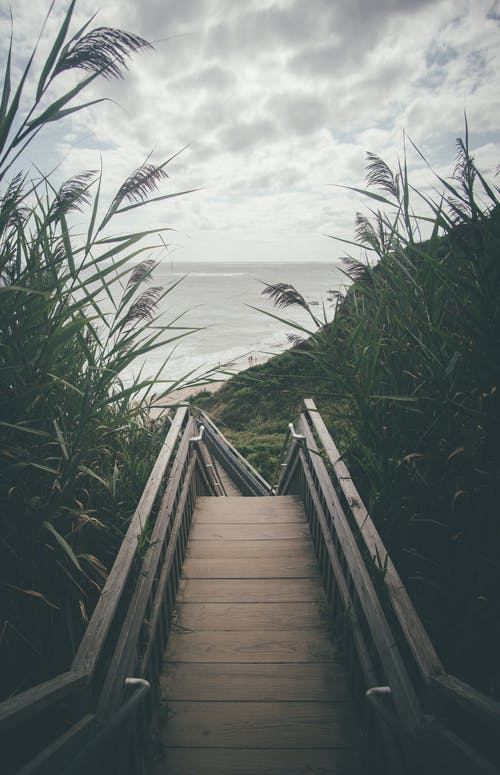 Brown Wooden Stairs Surrounded by Grass Leading To The Beach