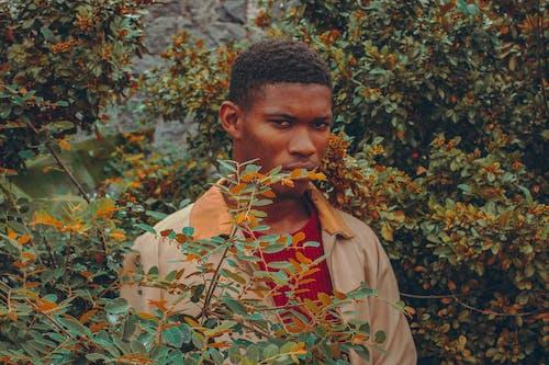 Бесплатное стоковое фото с Взрослый, выражение лица, мальчик, молодой