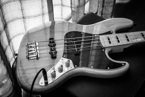 Free stock photo of bass, daylight, instrument, jazz