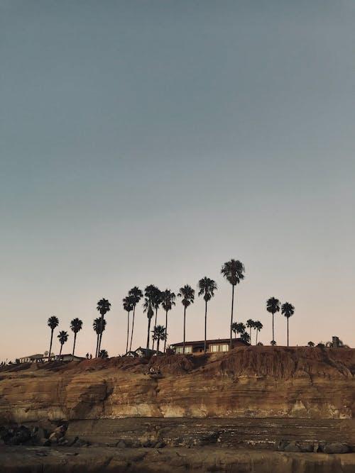 경치가 좋은, 나무, 드론으로 찍은 사진, 모래의 무료 스톡 사진