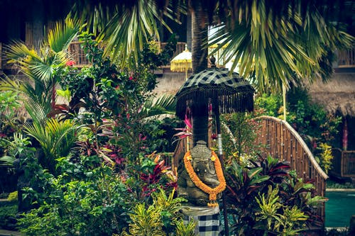 Безкоштовне стокове фото на тему «ідол, індійський, Індія, Індонезія»