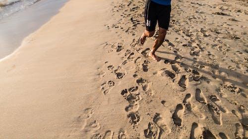 Ảnh lưu trữ miễn phí về bờ biển, cát ở bãi biển, đang chạy