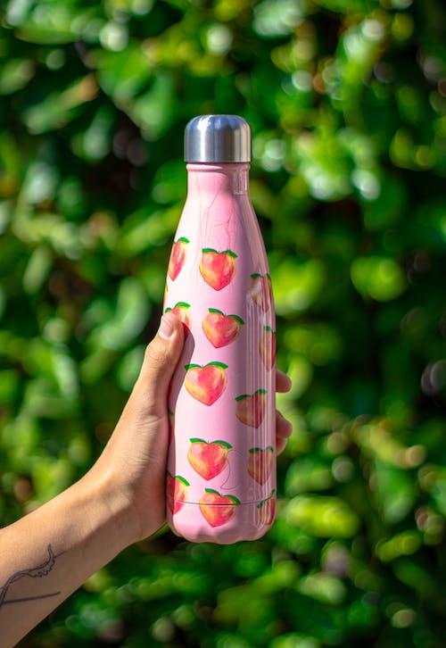 Бесплатное стоковое фото с бутылка, выращивание, выращивать, держать