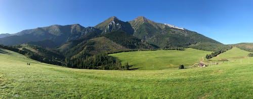 Kostnadsfri bild av horisont, naturlig skönhet, tatry