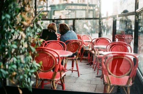 Photos gratuites de bar, barre, bistro, café