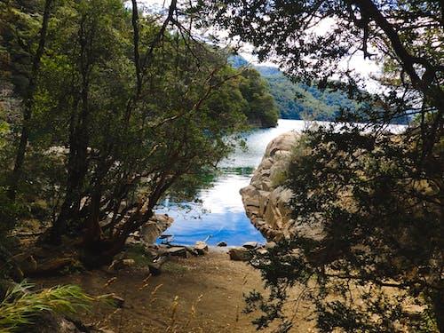 Free stock photo of adventure, Argentina, landscape, mountain
