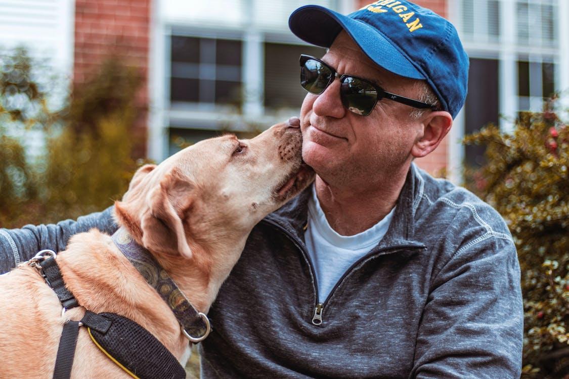 Pet Dog Licking Face of Man