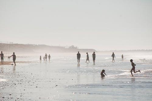 Silhouettes of people walking on wide coastline with kids running on wet coastline during weekend