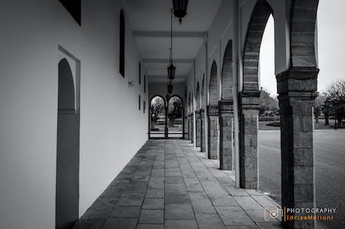 คลังภาพถ่ายฟรี ของ ขาวดำ, คอลัมน์, ทางเดินในอาคาร, มุมมอง