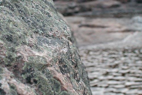 Free stock photo of northern ontario, river rocks