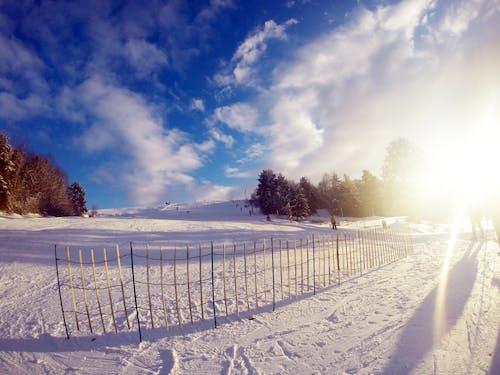 Gratis lagerfoto af blå himmel, moder natur, natur, skiløb