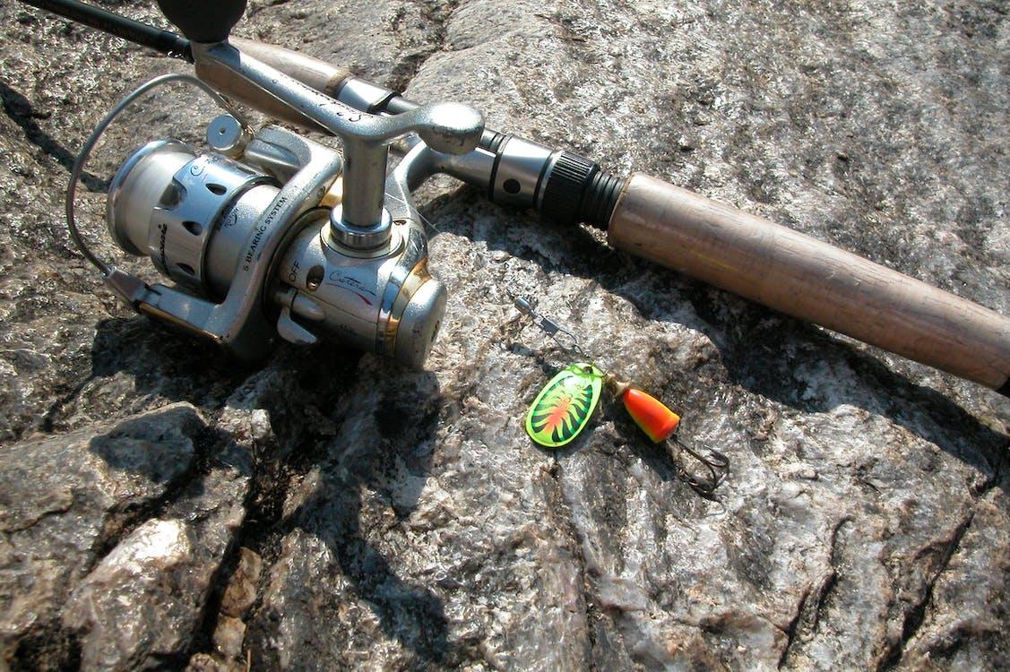 fishing, fishing rod
