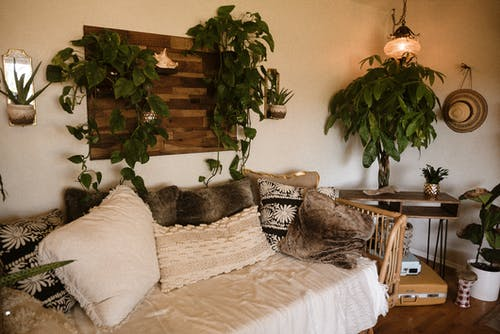 Green Vines Plant Wall Decor