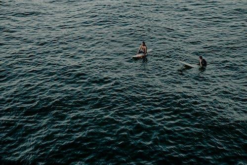 Immagine gratuita di acqua, corpo d'acqua, esterno, fare surf