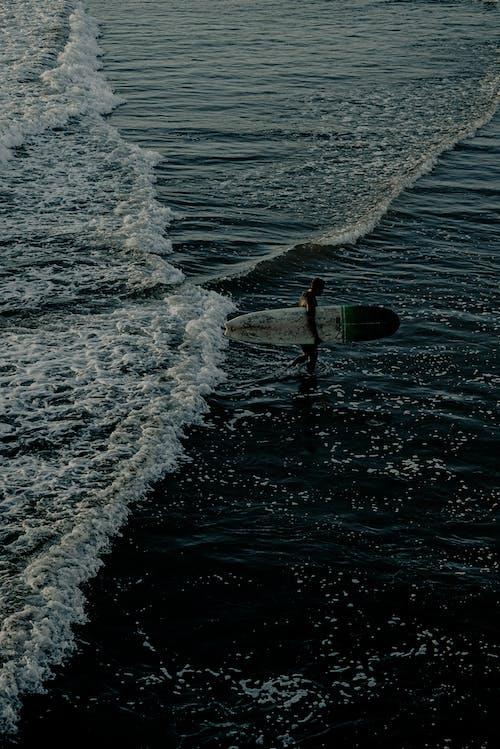 アクション, ウォータースポーツ, サーファー, サーフィンの無料の写真素材