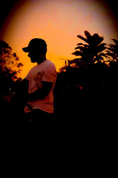 Gratis arkivbilde med afrika, afrikansk solnedgang, bass, bass fiske