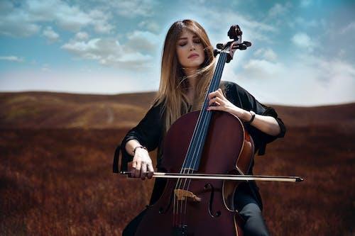 Darmowe zdjęcie z galerii z altówka, instrument, instrument smyczkowy, instrumenty muzyczne