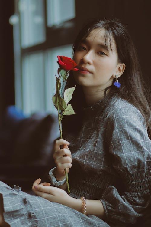 Základová fotografie zdarma na téma asiatka, asijská holka, brunetka