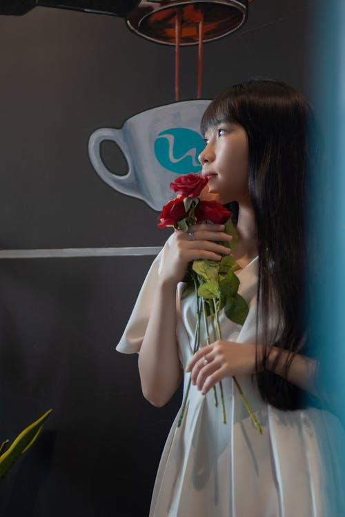 คลังภาพถ่ายฟรี ของ กลีบกุหลาบ, ความชัดลึก, ดอกกุหลาบ, ภาพพอร์ตเทรต