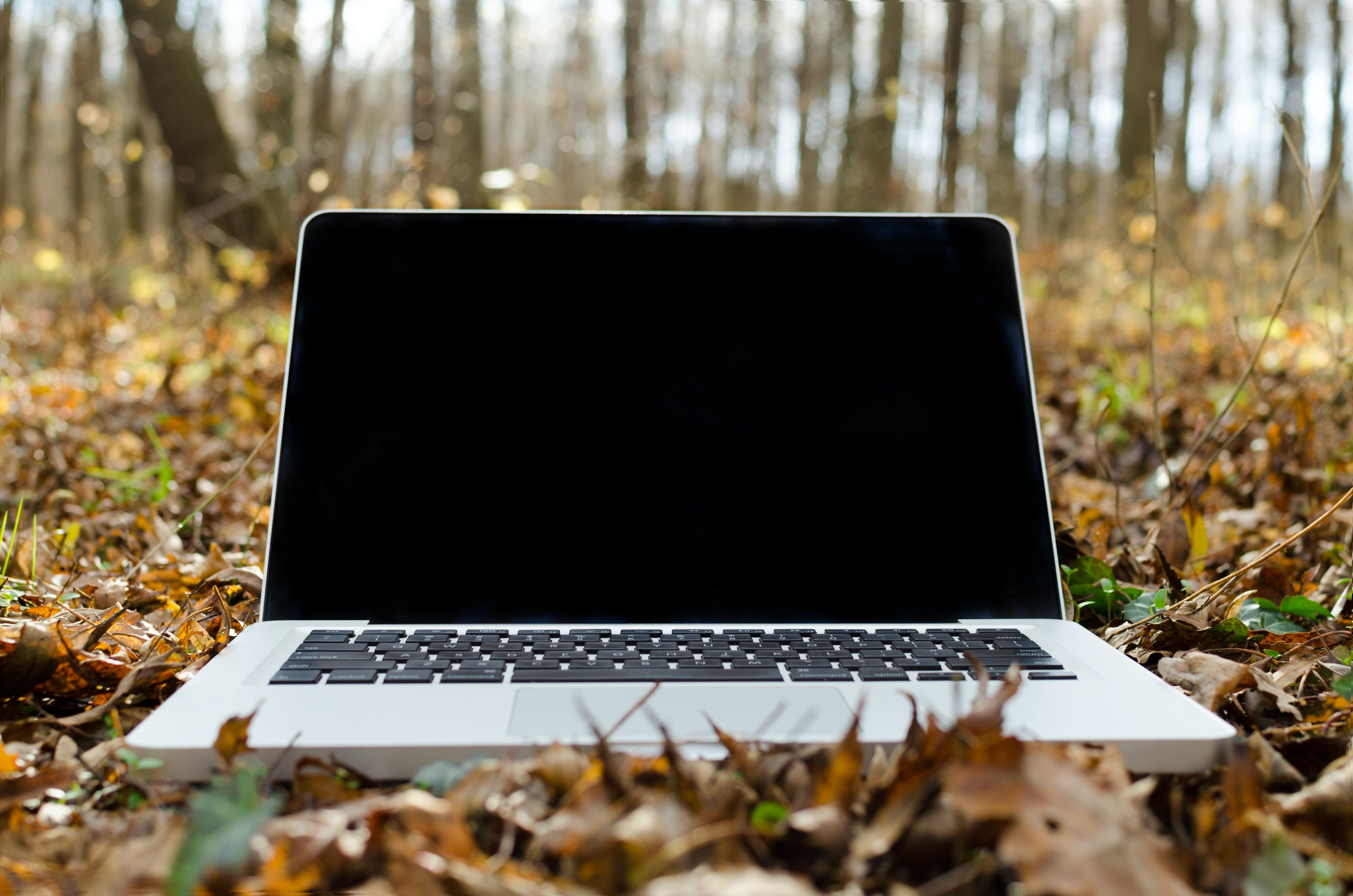 Silver Macbook Pro With Black Screen on Withered Leaves