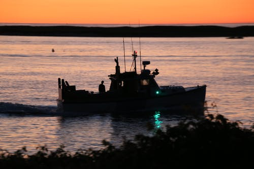 Free stock photo of boats, cape cod, fishing