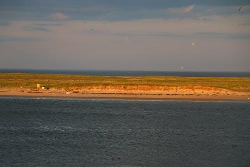 Free stock photo of beach, cape cod