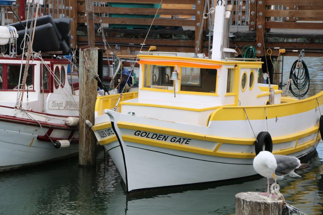 Free stock photo of boats, marina, san francisco