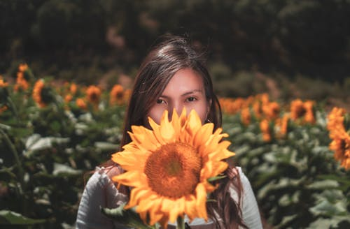 Gratis arkivbilde med blomsterblad, brunette, dekker, delikat