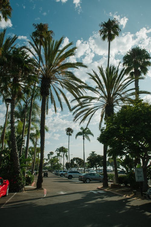 Gratis arkivbilde med biler, blå himmel, dagslys, dagtid